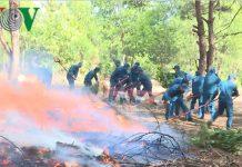Hơn 450.000 ha rừng ở Gia Lai có nguy cơ cháy cao