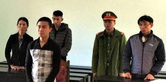 Thanh niên lãnh án tù vì tổ chức vào rừng hạ 10 cây gỗ bán lấy tiền tiêu xài