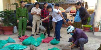 Phát hiện và tạm giữ 3 bảo tải động vật hoang dã