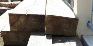 Tịch thu tang vật, phương tiện vận chuyển gỗ trái phép