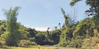 Hà Đông: Phát triển du lịch cộng đồng