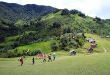 Núi Ngọc Linh. Ảnh: internet