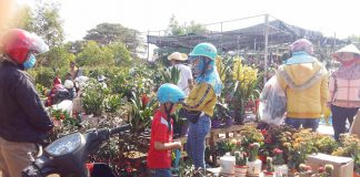 Chợ hoa Tết ngày cuối năm nhộn nhịp hẳn lên. Ảnh: Hà Phương