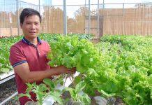 D:1BG-23-4-2019Đẩy mạnh phát triển nông nghiệp công nghệ cao ở Gia Lai- Ảnh Lê Nam.jpg