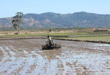 Chuẩn bị đất sản xuất vụ Mùa 2019. Ảnh: Nguyễn Diệp