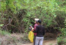 Đặc sản muối kiến vàng Krông Pa