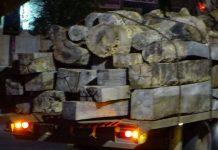 Trên xe bao gồm nhiều chủng loại gỗ. Ảnh: Hà Phương