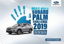 Subaru Palm Challenge 2019 sắp diễn ra tại Hà Nội