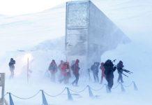 Microsoft lưu trữ mã nguồn trong hang Bắc cực để đề phòng ngày tận thế