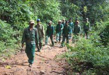 Lực  lượng  nhận  khoán  quản lý,  bảo vệ  rừng xã  Ia Kreng (huyện  Chư  Pah)  tổ chức tuần tra. Ảnh: N.D
