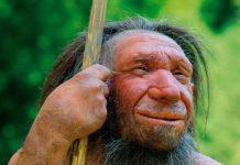 Bộ gene của nam giới Neanderthals là bằng chứng sống động cho quá trình tiến hóa của các loài thuộc chi Người, trải qua nhiều cuộc hôn nhân dị chủng - ảnh: BẢO TÀNG NEANDERTHALS