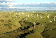 Gia Lai: Khởi công 2 dự án điện gió quy mô lớn