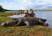 Hai ngư dân phát hiện con cá sấu khổng lồ 5,4 mét chết bí ẩn trên sông. Ảnh: Newsflash