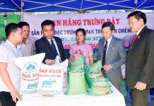 Gạo Ba Chăm mang chỉ dẫn địa lý Mang Yang: Cơ hội vươn ra thị trường