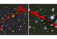 Hai thiên hà vô tuyến khổng lồ dưới ống kính của MeerKAT. Ảnh: MONTHLY NOTICES OF THE ROYAL ASTRONOMICAL SOCIETY