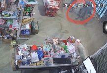 Đối tượng trộm bia bỏ chạy bị camera an ninh ghi lại. Ảnh: Lê Gia