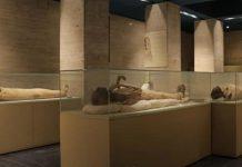 Xác ướp các vị vua và nữ hoàng Ai Cập, có niên đại hơn 3.000 năm, tại Bảo tàng Ai Cập ở Cairo. Ảnh: Experience Egypt.