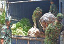 Bộ Chỉ huy Quân sự tỉnh tiếp nhận hơn 10 tấn rau củ để chuyển về bếp ăn của các khu cách ly trên địa bàn tỉnh. Ảnh: Lam Nguyên