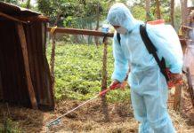 Tiêu độc khử trùng chuồng trại chăn nuôi