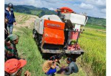 Ia Pa: Một em nhỏ bị máy cắt lúa cán tử vong