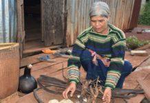 Bà Siu Á chọn cách phơi khô rễ và vỏ cây rừng để làm men rượu truyền thống. Ảnh: Trần Dung